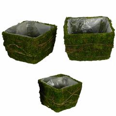 Decorative 3 Piece Moss And Salim Basket Set, Green
