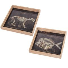 Aluminum Printed Tray , Set Of 2, Black And Brown