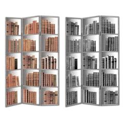 Benzara Exclusive Room Divider- Library 2 Theme