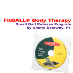 FitBALL FitBALL Body Therapy DVD BULK (sold in DVD sleeve)