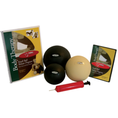 "FitBALL FitBALL Body Therapy Set (1 Each 5"",6"",7"" Ball, Manual, DVD & Pump)"