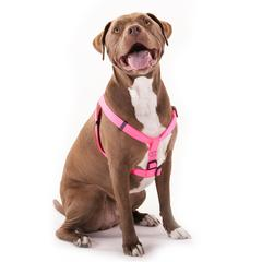 15in -25in Step In Harness Pink, Lrg 40 - 120 lbs Dog By Pet Products
