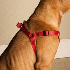 9in - 15in Step In Harness Red, Sml 10 - 45 lbs dog By Pet Products