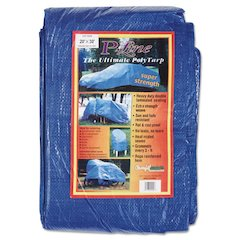 Multiple Use Tarpaulin, Polyethylene, 20 ft x 30 ft, Blue