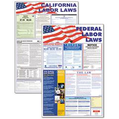 State/Federal Labor Law Legally Required Multi-Colored Poster, 24 x 36