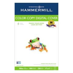 Copier Digital Cover, 92 Brightness, 17 x 11, Photo White, 250 Sheets/Pack