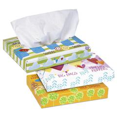 White Facial Tissue, 2-Ply, 40 Tissues/Box, 80 Boxes/Carton