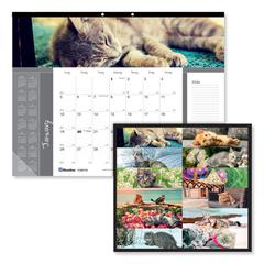 Pets Collection Monthly Desk Pad, 22 x 17, Furry Kittens, 2020