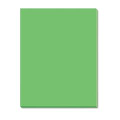 Riverside Construction Paper, 76 lbs., 18 x 24, Green, 50 Sheets/Pack