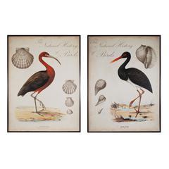 Sterling Heron Anthology I And II
