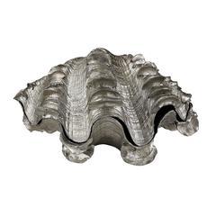 Silver Leaf Shell