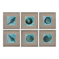 Sterling Chevron Shell I, II, III, IV,V,VI  -Print Under Glass Wall Art
