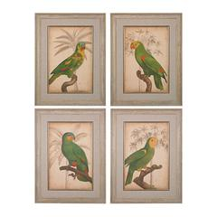 Parrot And Palm I, II, III, IV - Fine Art Giclee Under Glass