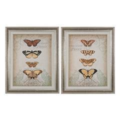 Cartouche And Butterflies I, II - Fine Art Giclee Under Glass