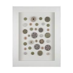 Random Sea Urchin Wall Décor