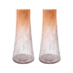 Brandy Set of 2 Vases Small