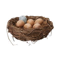 Lazy Susan Moor Hen Eggs In Nest