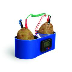 AMERICAN EDUCATIONAL PROD POTATO CLOCK