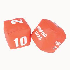 AMERICAN EDUCATIONAL PROD FITNESS DICE