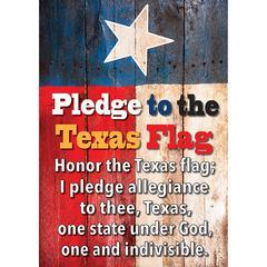 Magnetic Texas Pledge 8X11, Sheet