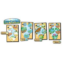CARSON DELLOSA BB SET LIFE CYCLES GR 1-8 BUTTERFLY CHICK/FROG/PLANT