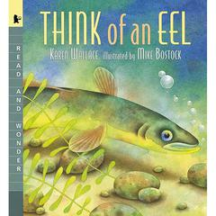 CANDLEWICK PRESS THINK OF AN EEL BIG BOOK