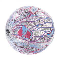 AMERICAN EDUCATIONAL PROD HUMAN ANATOMY CLEVER CATCH BALL