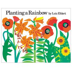 HOUGHTON MIFFLIN PLANTING A RAINBOW BIG BOOK