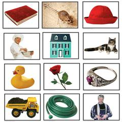 PHOTOGRAPHIC LEARNING CARDS RHYMING PAIRS