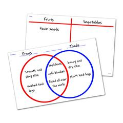 LEARNING RESOURCES VENN DIAGRAM/T-CHART WRITE & WIPE DESK MAT