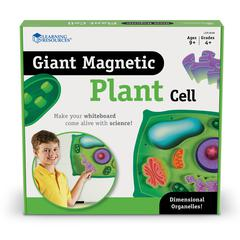 LEARNING RESOURCES MAGNETIC PLANT CELLS