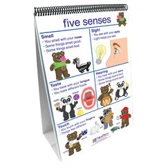 NEW PATH LEARNING FLIP CHARTS ALL ABOUT ME EARLY CHILDHOOD SCIENCE READINESS