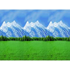 PACON FADELESS 48X12 MOUNTAINS SOLD 4RLS PER CARTON