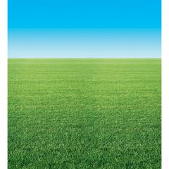 FADELESS 48X12 SUMMER HORIZON 4RLS PER CARTON