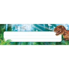 DISCOVERING DINOSAURS DESK TOPPERS NAME PLATES