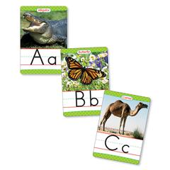 SCHOLASTIC TEACHING RESOURCES BB SET ANIMALS FROM A TO Z MANUSCRIPT ALPHABET SET