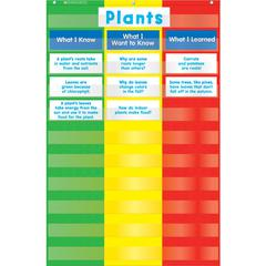 3 COLUMN CHART POCKET CHART