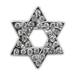 Mirage Pet Products Holiday 10mm Slider Charms Star of David .