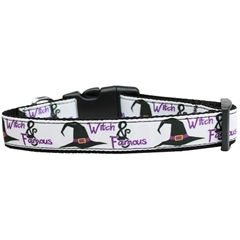 Mirage Pet Products Witch and Famous Nylon Dog Collar Medium