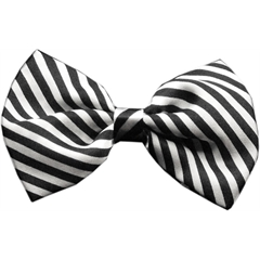 Mirage Pet Products Dog Bow Tie Moxie