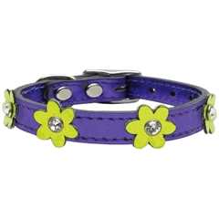 Mirage Pet Products Flower Leather Metallic Purple w/ Metallic Lime Green Flowers 10