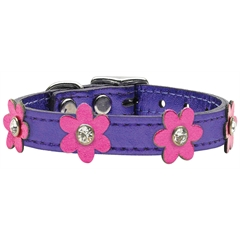 Mirage Pet Products Flower Leather Metallic Purple w/ Metallic Pink 10