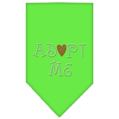 Mirage Pet Products Adopt Me Rhinestone Bandana Lime Green Small