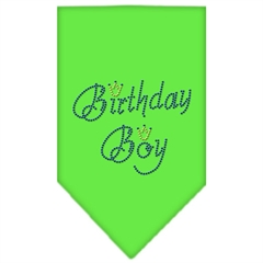 Mirage Pet Products Birthday Boy Rhinestone Bandana Lime Green Small