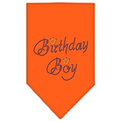 Mirage Pet Products Birthday Boy Rhinestone Bandana Orange Large