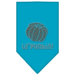 Mirage Pet Products Lil Punkin Rhinestone Bandana Turquoise Small