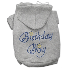 Mirage Pet Products Birthday Boy Hoodies Grey M (12)