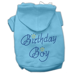 Mirage Pet Products Birthday Boy Hoodies Baby Blue M (12)