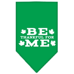 Mirage Pet Products Be Thankful for Me Screen Print Bandana Emerald Green Small
