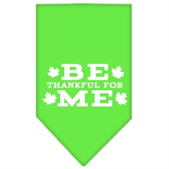 Mirage Pet Products Be Thankful for Me Screen Print Bandana Lime Green Small